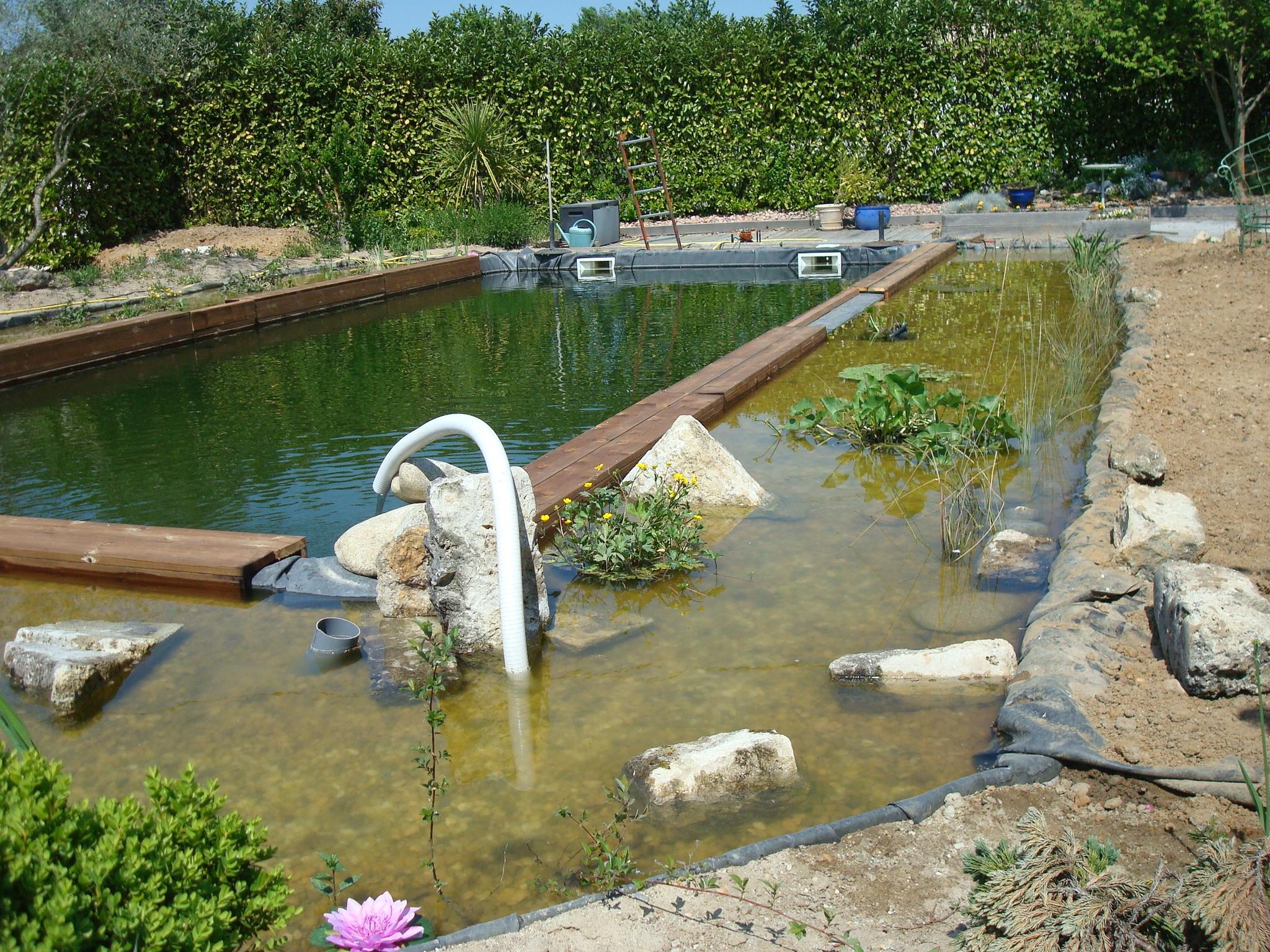 Bassin le blog de la lauriere for Bache plastique bassin